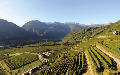Tour in Valtellina in elicottero