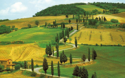 Tour Colline Toscane in elicottero