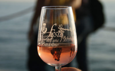 Tour lago di Garda in elicottero / Festa dell'uva e del vino di Bardolino